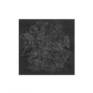 L825 ROSONE ZODIACO GRYPHEA декор4 980*980