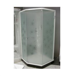 Душевая кабина IDO Showerama 8-5 100х100 (профиль серебристый, стекла художественные (Dandelion ll)/