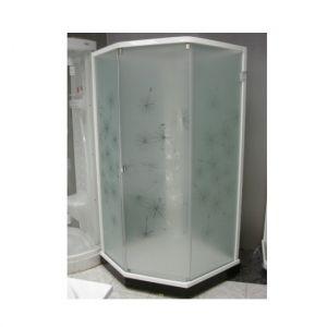 Душевая кабина IDO Showerama 8-5 100х100 (профиль белый, стекла художественные (Dandelion ll)/прозра