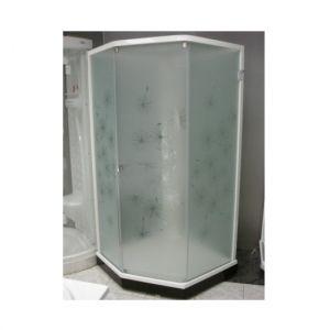 Душевая кабина IDO Showerama 8-5 100х100 (профиль белый, стекла художественные (Dandelion ll)/узорча