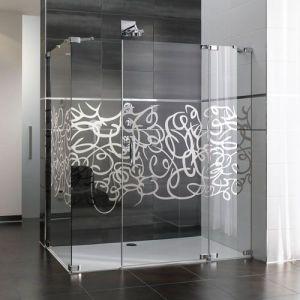 Душевые двери Huppe Studio Paris  PR2209.G02.321 90x90