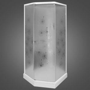 Душевая кабина IDO Showerama 8-5 100х100 (профиль белый, стекло художественное (Dandelion ll)