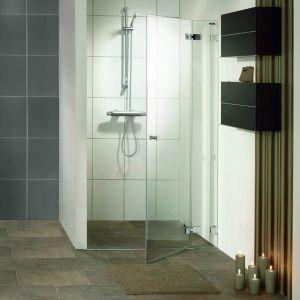 Распашная дверь в нишу DuschoLux Collection 2 (профиль - серебро, стекло - прозрачное с CareTec)
