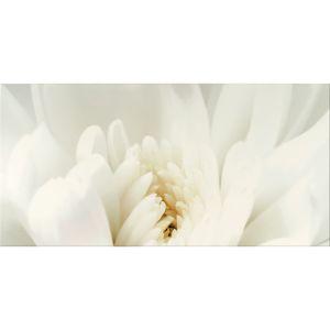 Декор настенный Opoczno Diago Inserto Flower A 60 × 29,7 см