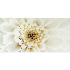 Декор настенный Opoczno Diago Inserto Flower B 60 × 29,7 см